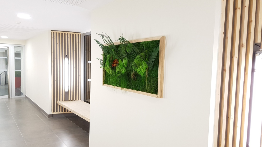 tableaux-vegetaux-stabilises-hall-dentree-residence-bordeaux-1