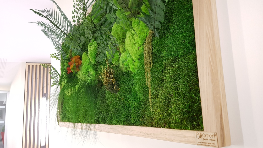 tableaux-vegetaux-stabilises-hall-dentree-residence-bordeaux-5